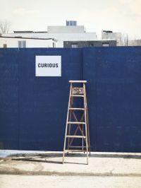 b_200_0_16777215_00_images_blogimages_curious.ladder.jpg